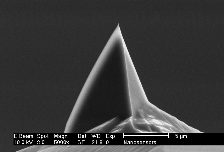 Side view SEM image of PointProbe AFM tip