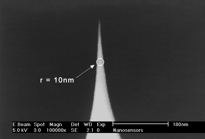 Close-up view SEM image of SuperSharpSilicon AFM tip