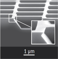 SEM image of TGX calibration standard with undercut structures
