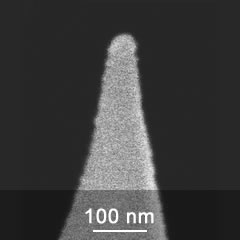 SEM image of DPE series AFM probe tip close-up