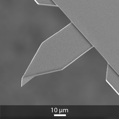 SEM image of OPUS 55AC AFM cantilever and AFM tip